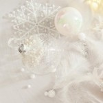 images/product/150/019/0/019085/lot-de-6-flocons-de-noel-etoiles-blanc-irise_19085_1