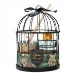images/product/150/072/1/072185/coffret-cage-diff-bougie-lola-1_72185_2