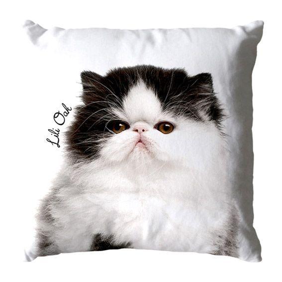 coussin d houssable chat persan blanc coussin et housse de coussin eminza. Black Bedroom Furniture Sets. Home Design Ideas