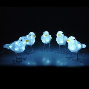 Lote de 5 pájaros luminosos Pilú Blanco frío 40 LED