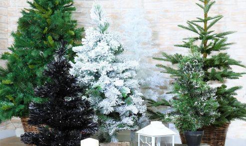 Sapin de Noël: Mon beau sapin roi de la maison!