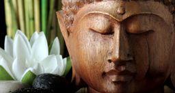 Pour réussir un jardin Zen